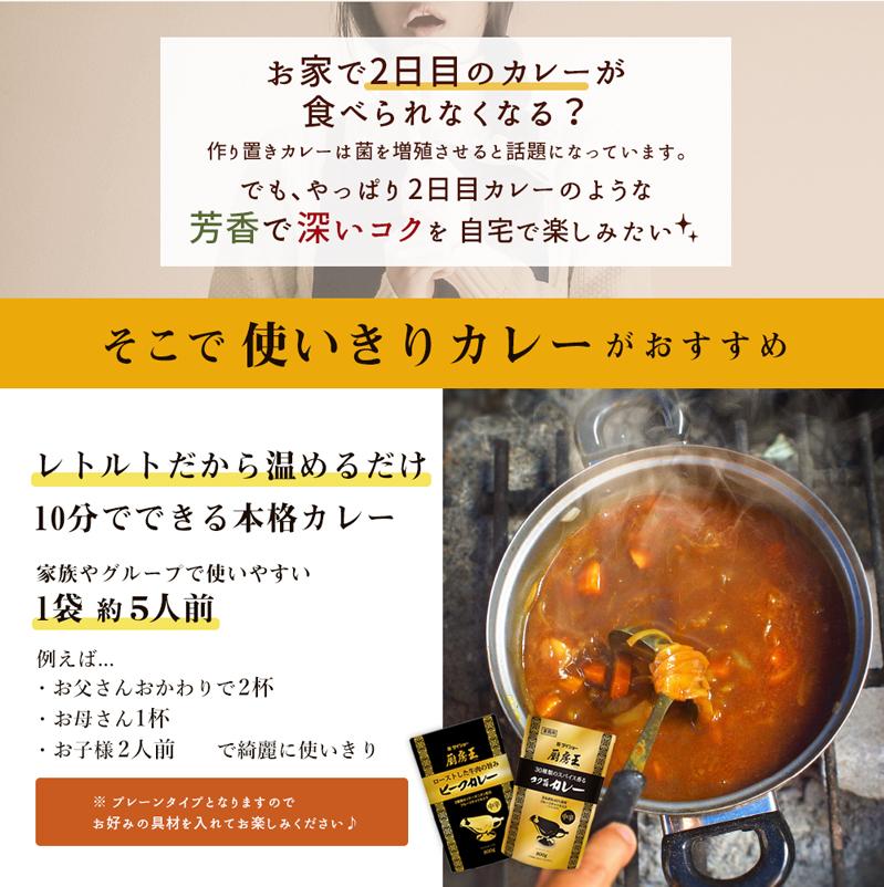 ビーフカレー商品ページ①